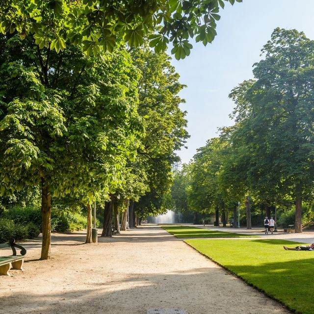 The Park of Brussels