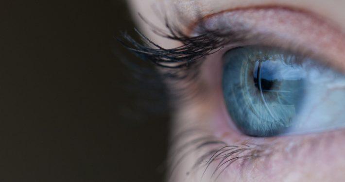 Retina scan biometrics