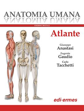Anatomia umana - Atlante monovolume
