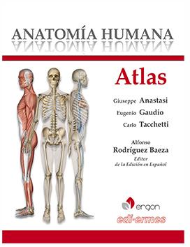 Anatomía Humana - Atlane Monovlomen