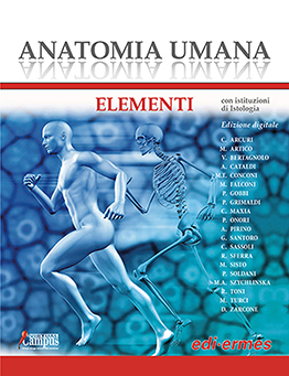 Anatomia umana - Elementi