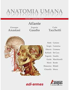 Anatomia umana - Atlante volume 2