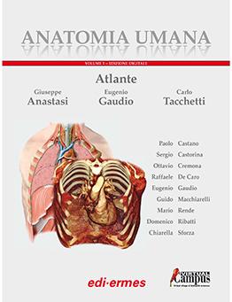 Anatomia umana - Atlante volume 1