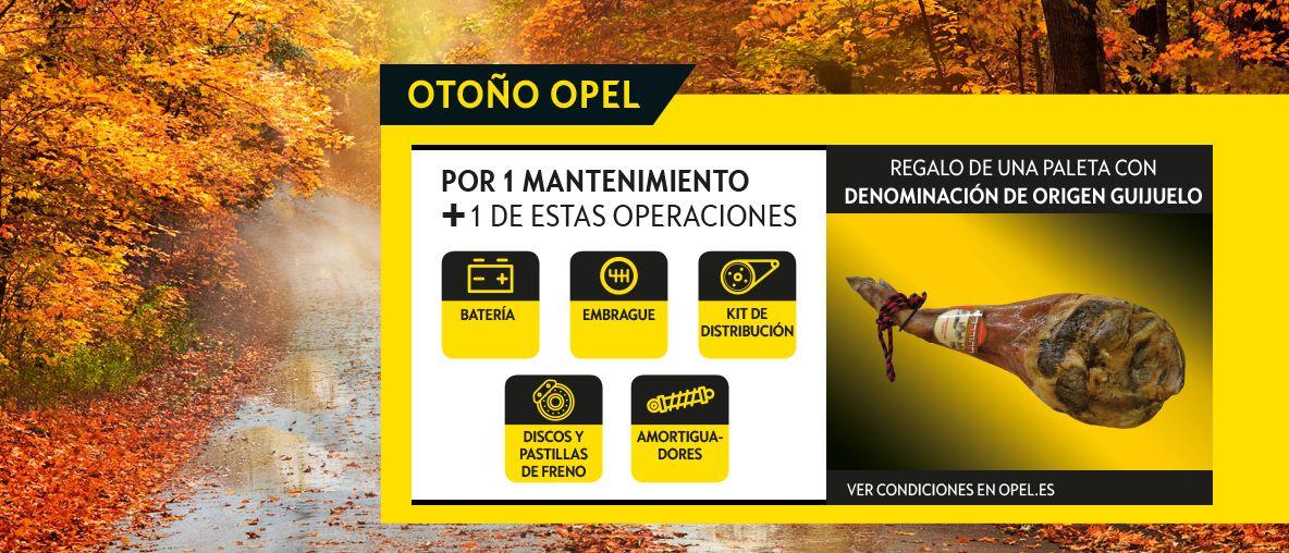 Otoño Opel