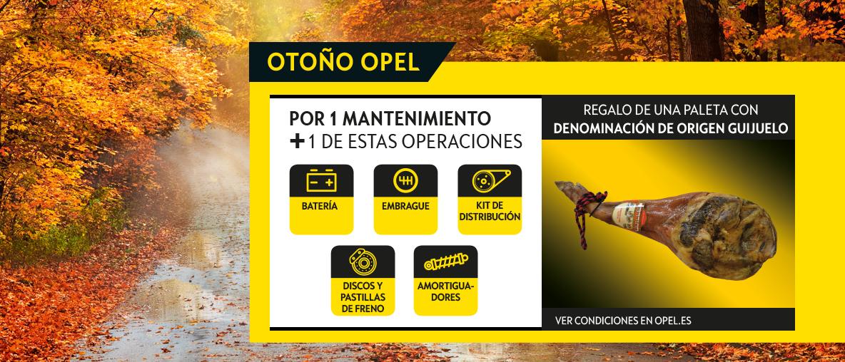 Otoño Opel .