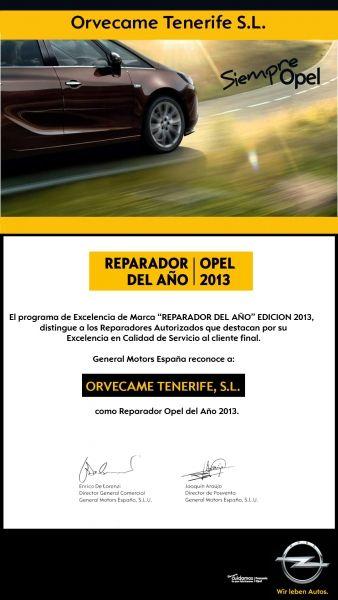 REPARADOR DEL AÑO 2013