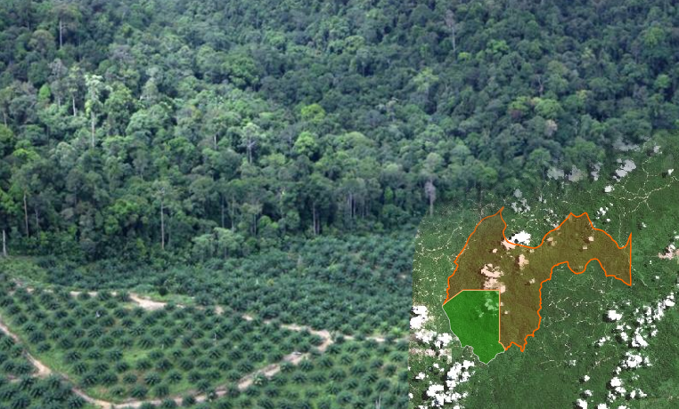 Protecting aquatic diversity in deforested tropical landscapes