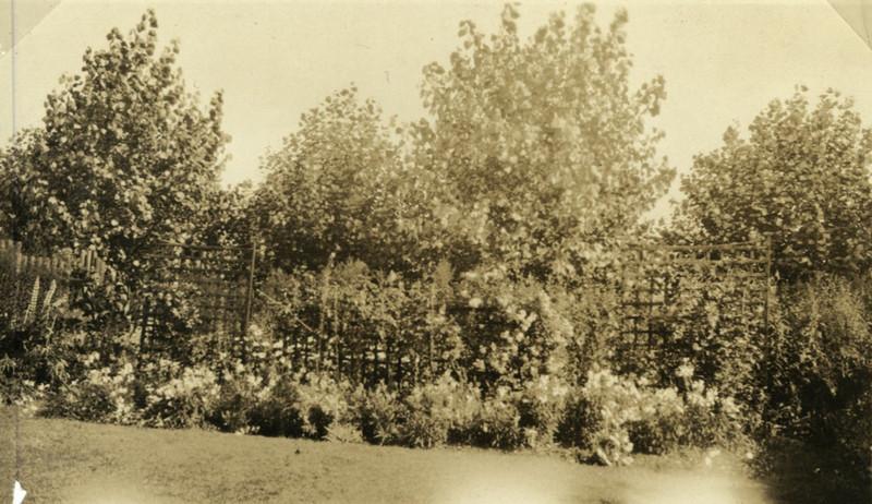 St Nicholas - New Rectory- Garden.jpg