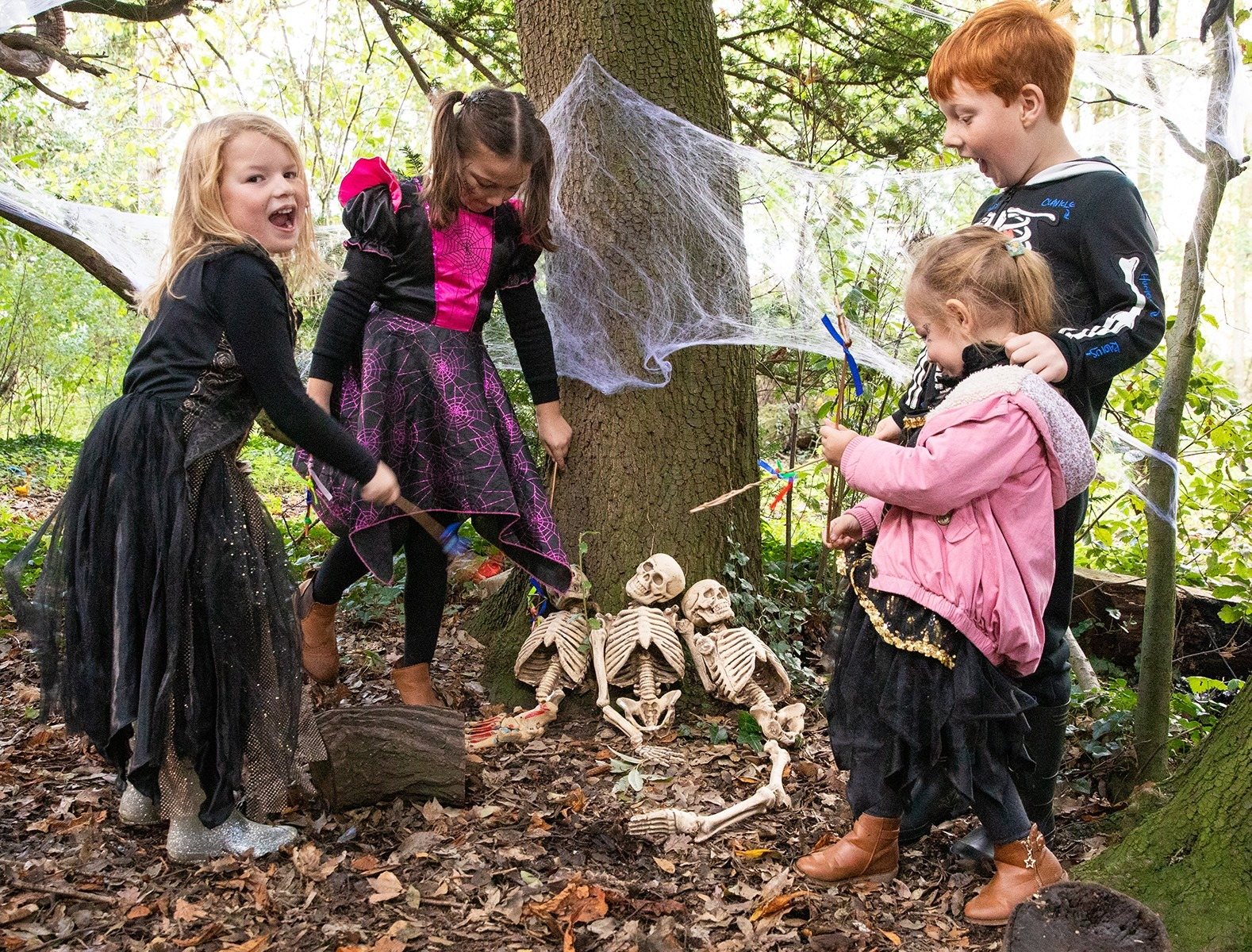 Half Term What's On Guide