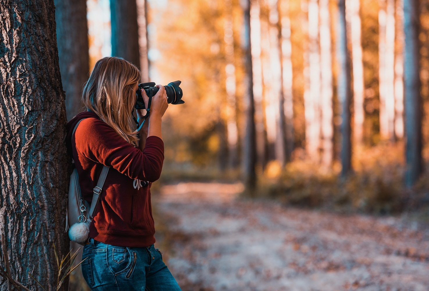 Hundreds of Entries Received for Photography Competition As Judging Begins