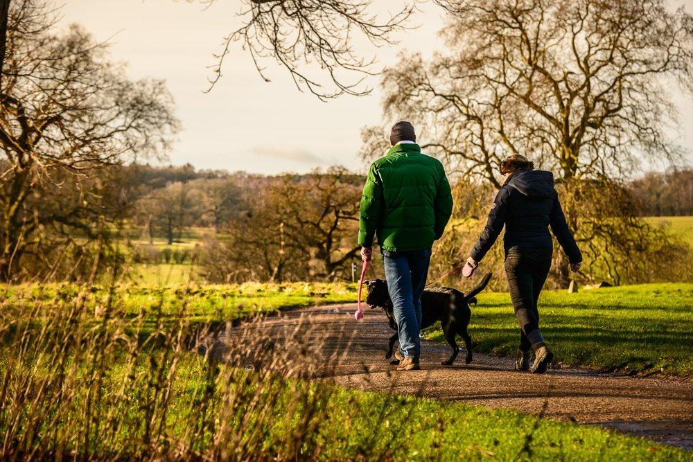 Welly Walks in Bury St Edmunds & Beyond