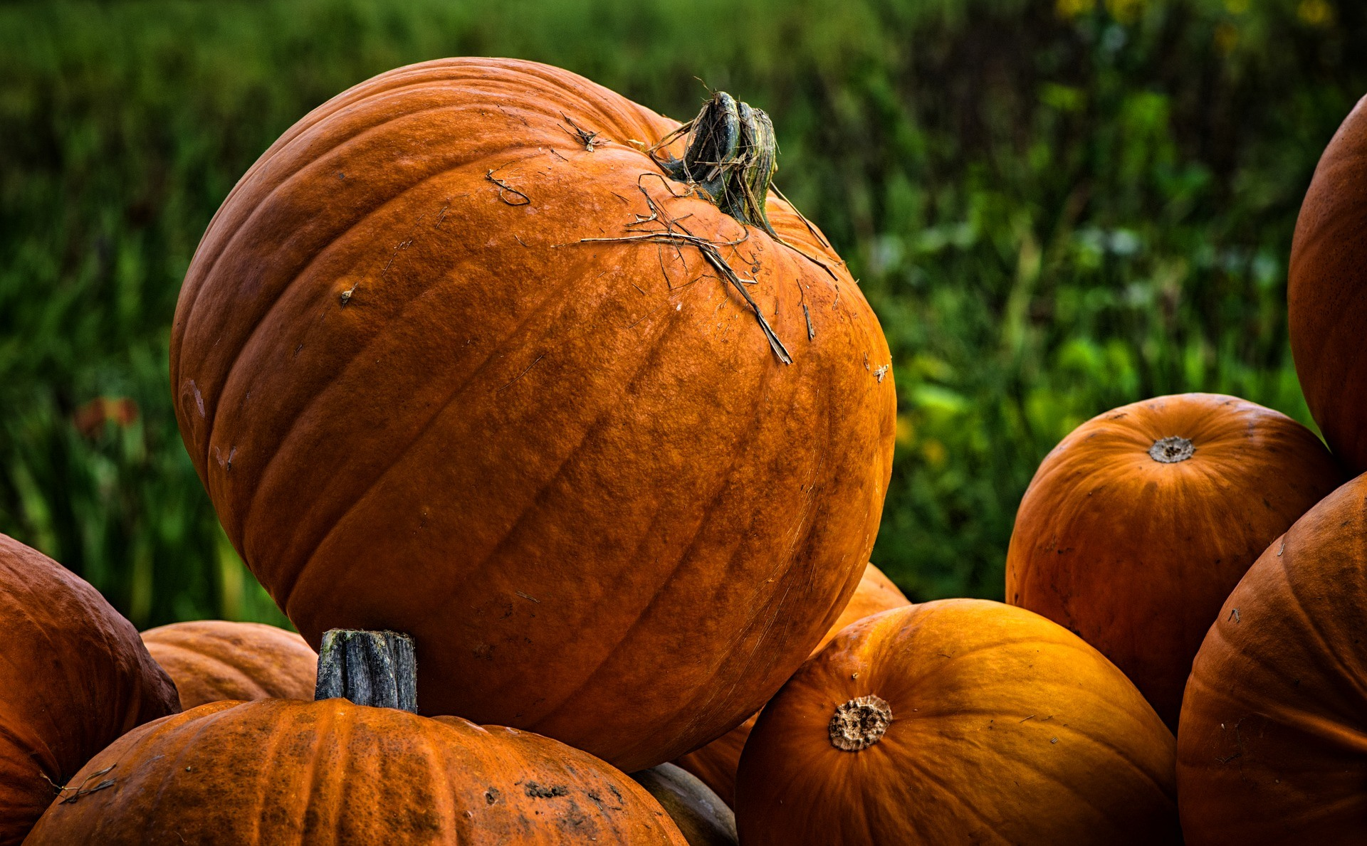 A Spooktacular Pumpkin Soup Recipe from Suffolk's Foodie Town