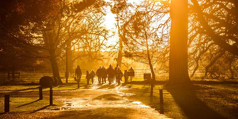 Autumn Welly Walks