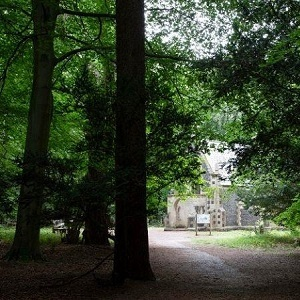 Brandon Country Park's 'Park in the Dark' Prize Trail