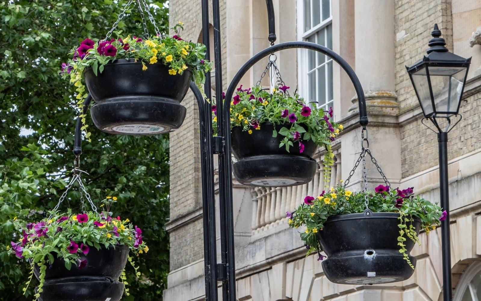 Bury In Bloom Keeps Bury Blooming Lovely