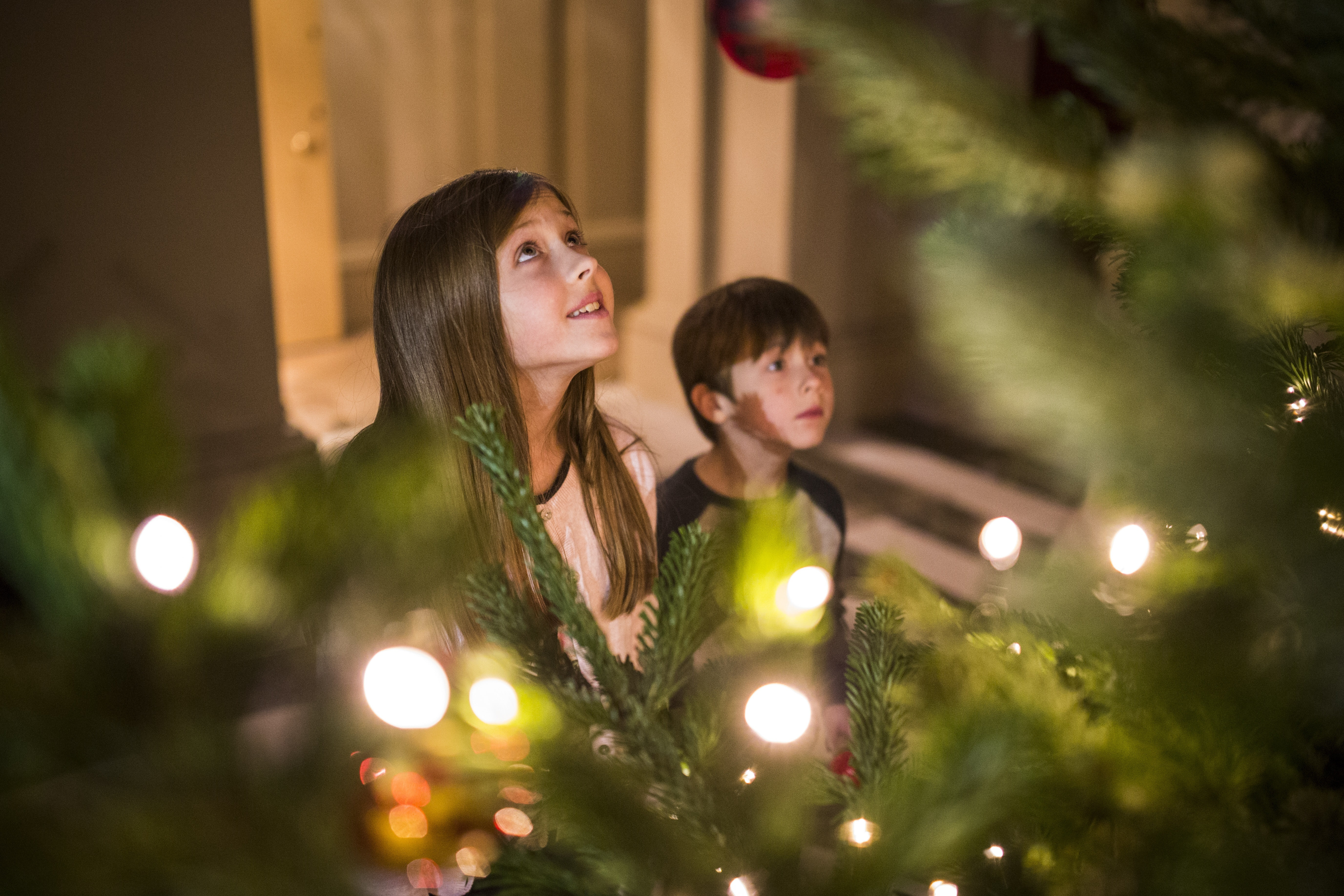 12 Days of Christmas at Ickworth