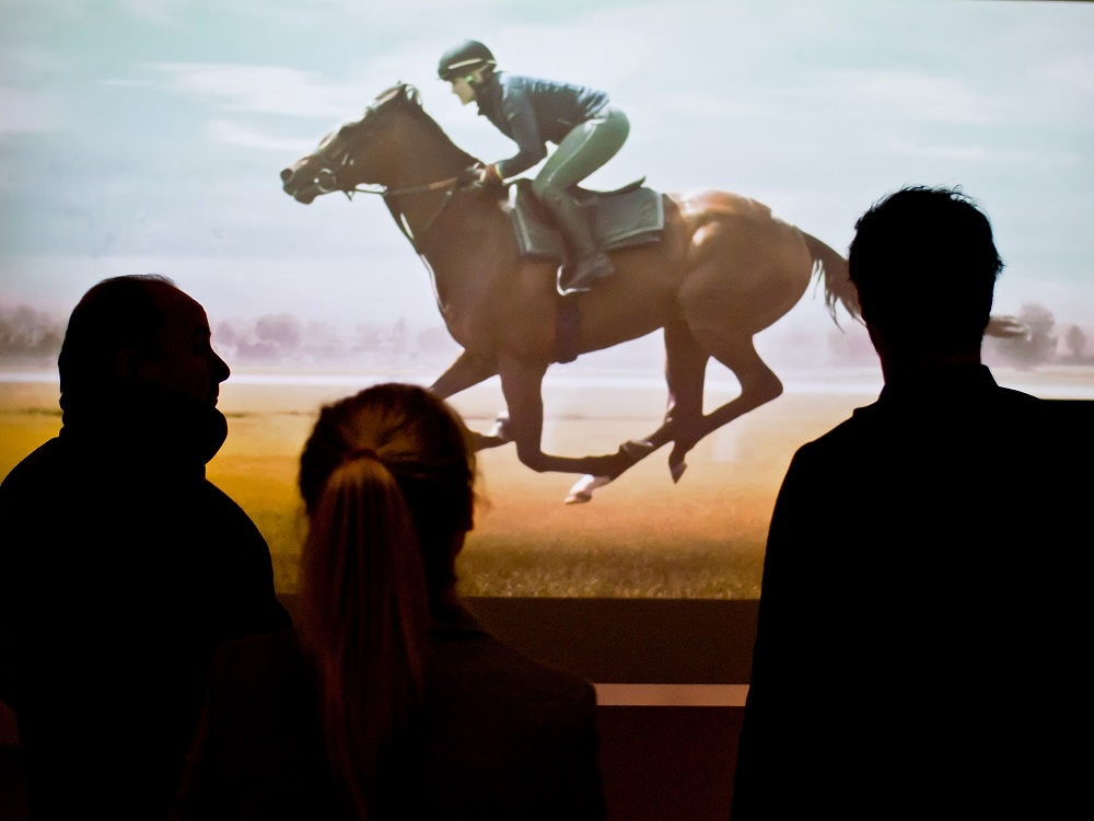 Discover History, Horse Racing and Royalty in Nearby Newmarket!