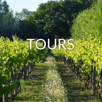 Grand Tour of Giffords Hall Vineyard