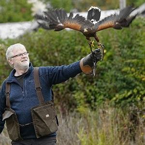 Hawk Walks Experience at Suffolk Owl Sanctuary