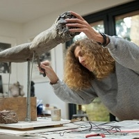 Exhibition by Sculptor Nicole Farhi to Open at Gainsborough's House