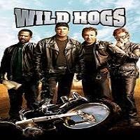 Big Outdoor Cinema at Clare Castle - Wild Hogs