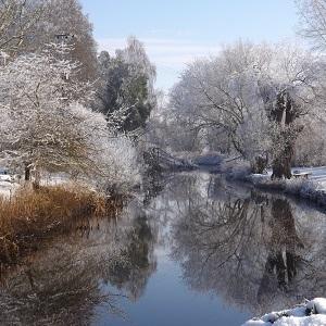 Enjoy Fullers Mill Garden in Winter
