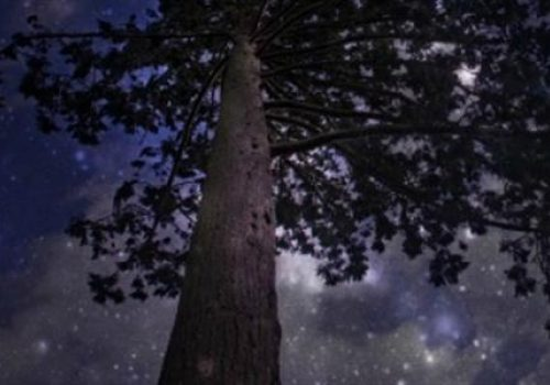 Nowton Park Star Party - October 19 & 20