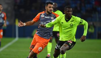 Lille – Montpellier : un nouveau succès des Lillois ?