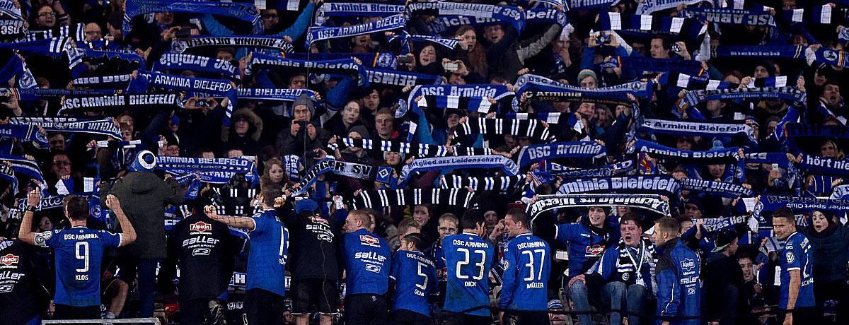 DSC-Fans