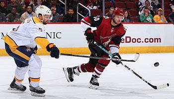 NHL: Diese Playoff-Chancen haben Raffl, Grabner und Vanek