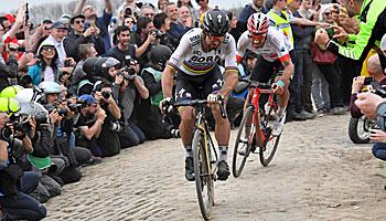 Paris-Roubaix: Peter Sagan ist Titelverteidiger und Top-Favorit