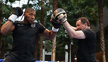Anthony Joshua – Andy Ruiz: Eine leichte Übung für den Champion
