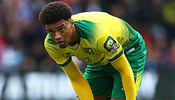 Norwich City im Abstiegskampf: Noch ist nichts verloren