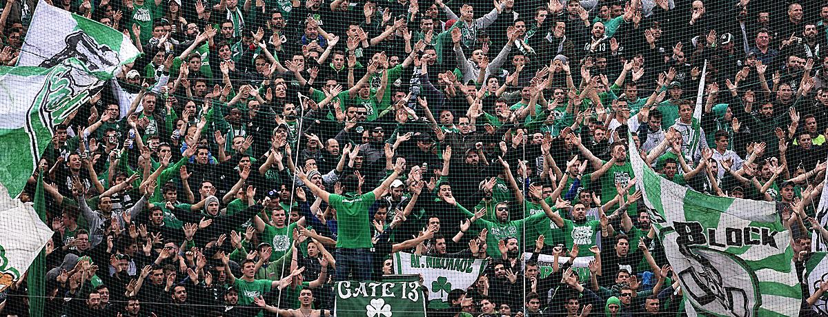 Fans Panathinaikos