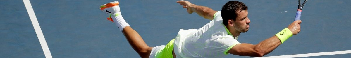 The best bets of the US Open Tennis odds on day six