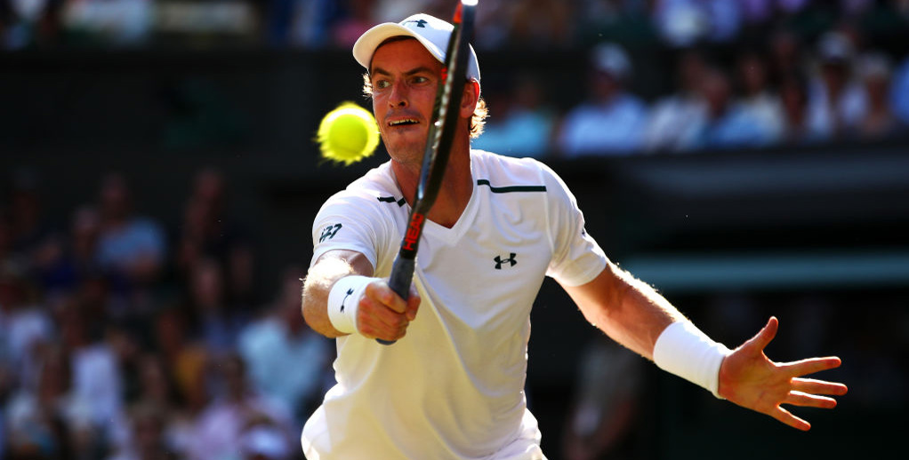 Murray vs janowicz betting tips michael bettinger silotransporte-u logistics