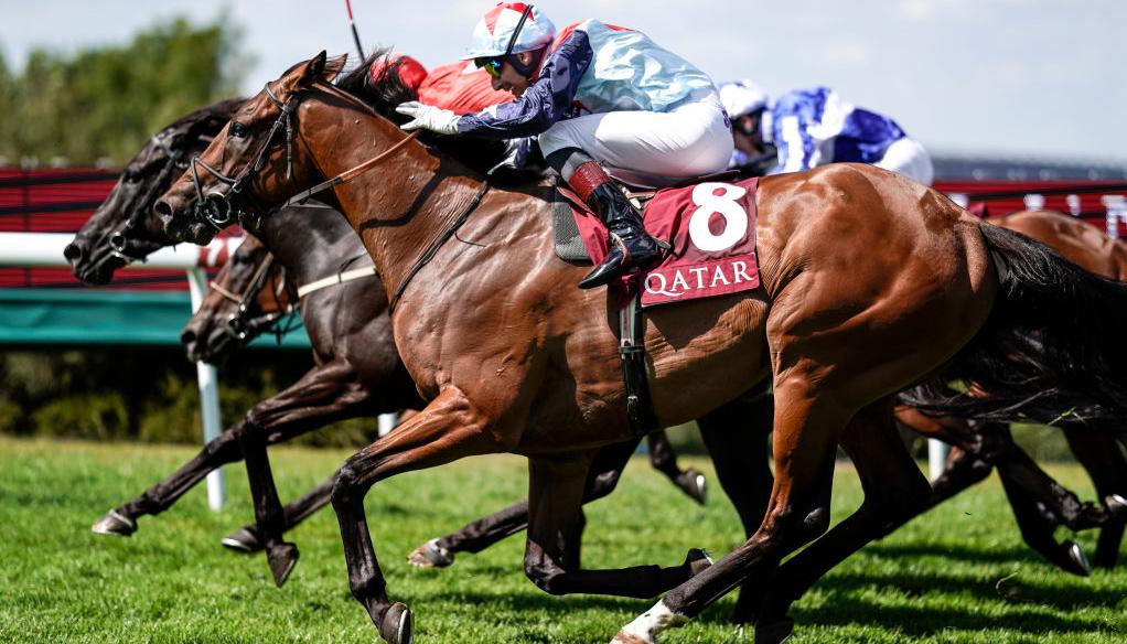 ITV racing tips: Sir Dancealot appeals in Newbury feature
