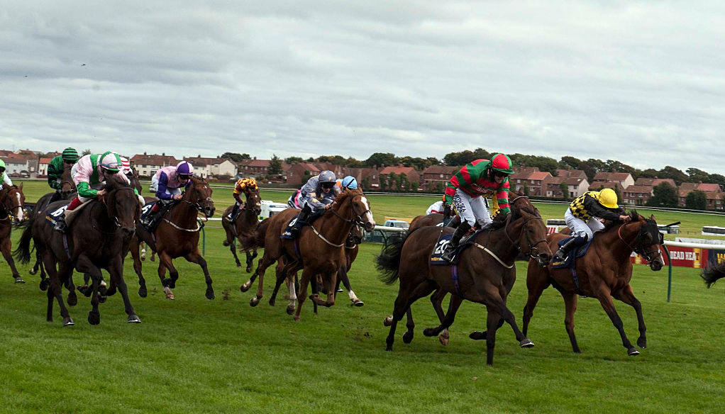 ITV racing tips: Ayr Gold Cup day and Newbury selections