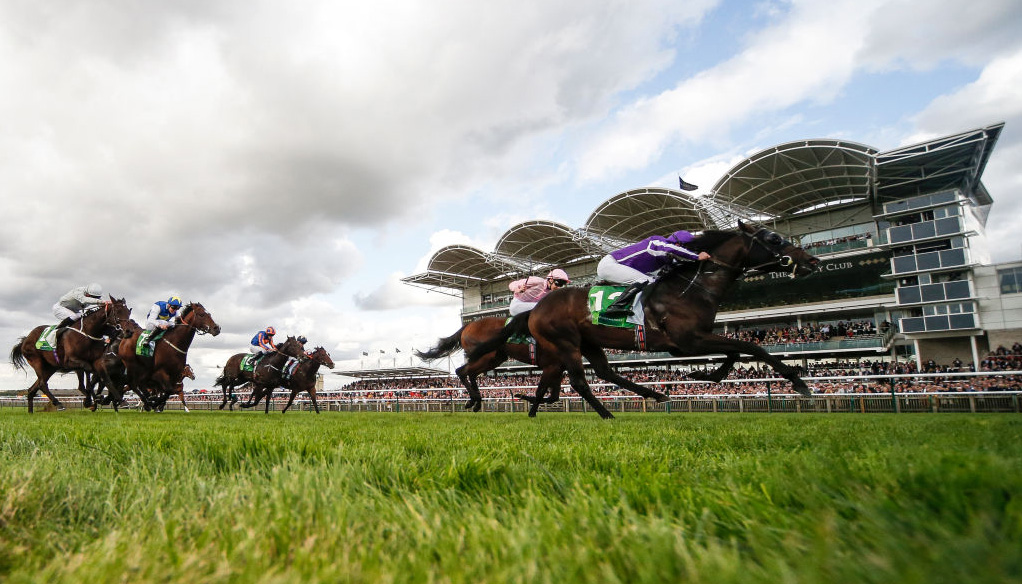 ITV racing tips: Newmarket Cesarewitch meeting and York