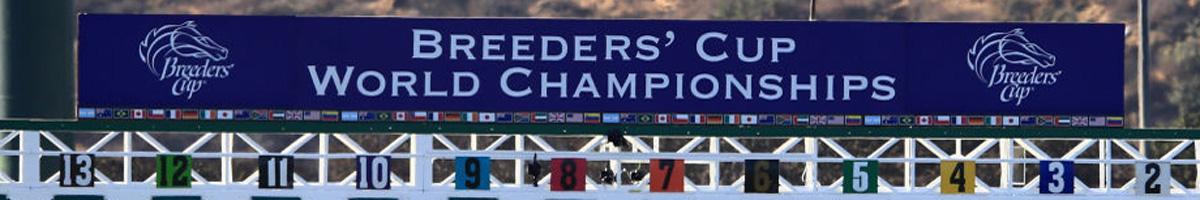 Breeders Cup Tips Gt Santa Anita Preview Amp Picks 02 11
