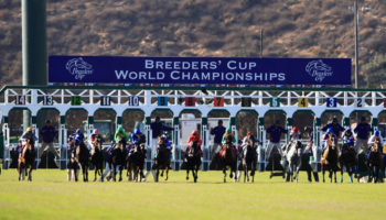 Breeders' Cup 2020 tips: Selections for Keeneland spectacular