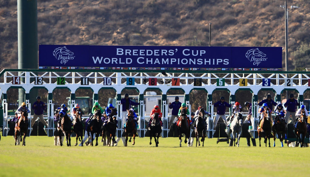Breeders' Cup tips: Santa Anita preview with expert picks