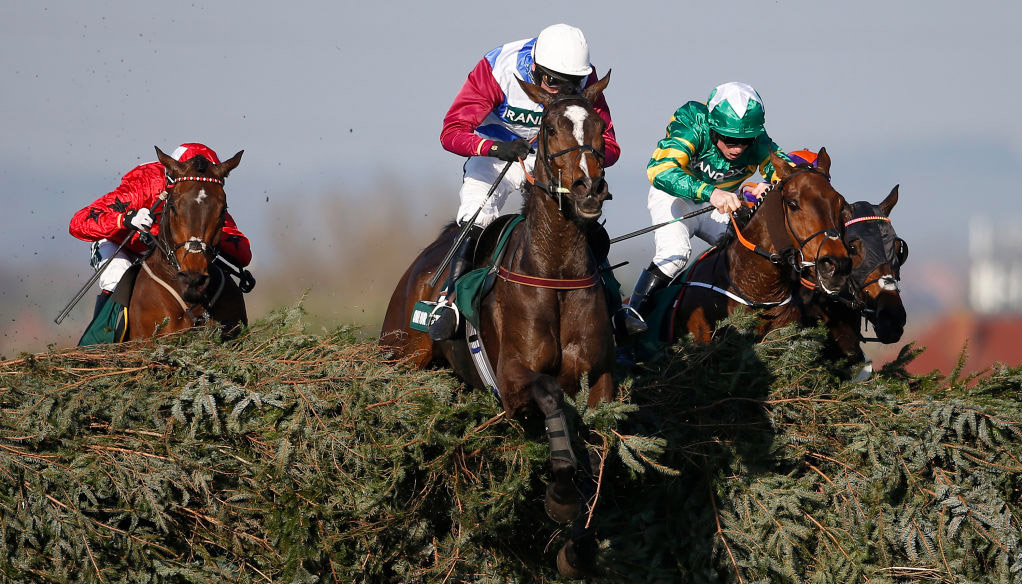 Grand National tips: Three value alternatives to Tiger Roll
