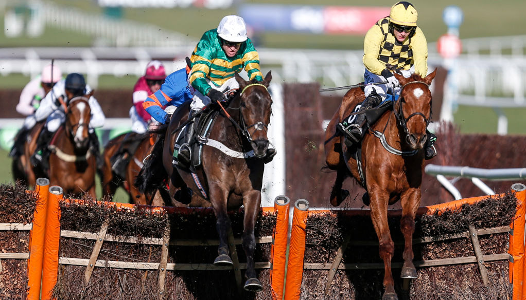 Champion Hurdle runners: Buveur D'Air back to defend title