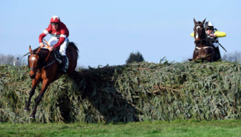 Grand National 2021 tips, horse racing, Aintree