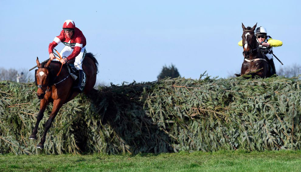 Grand National runners: Pinstickers' guide to Aintree field