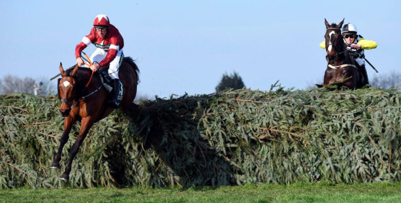 Tiger Roll is favourite among the Grand National runners