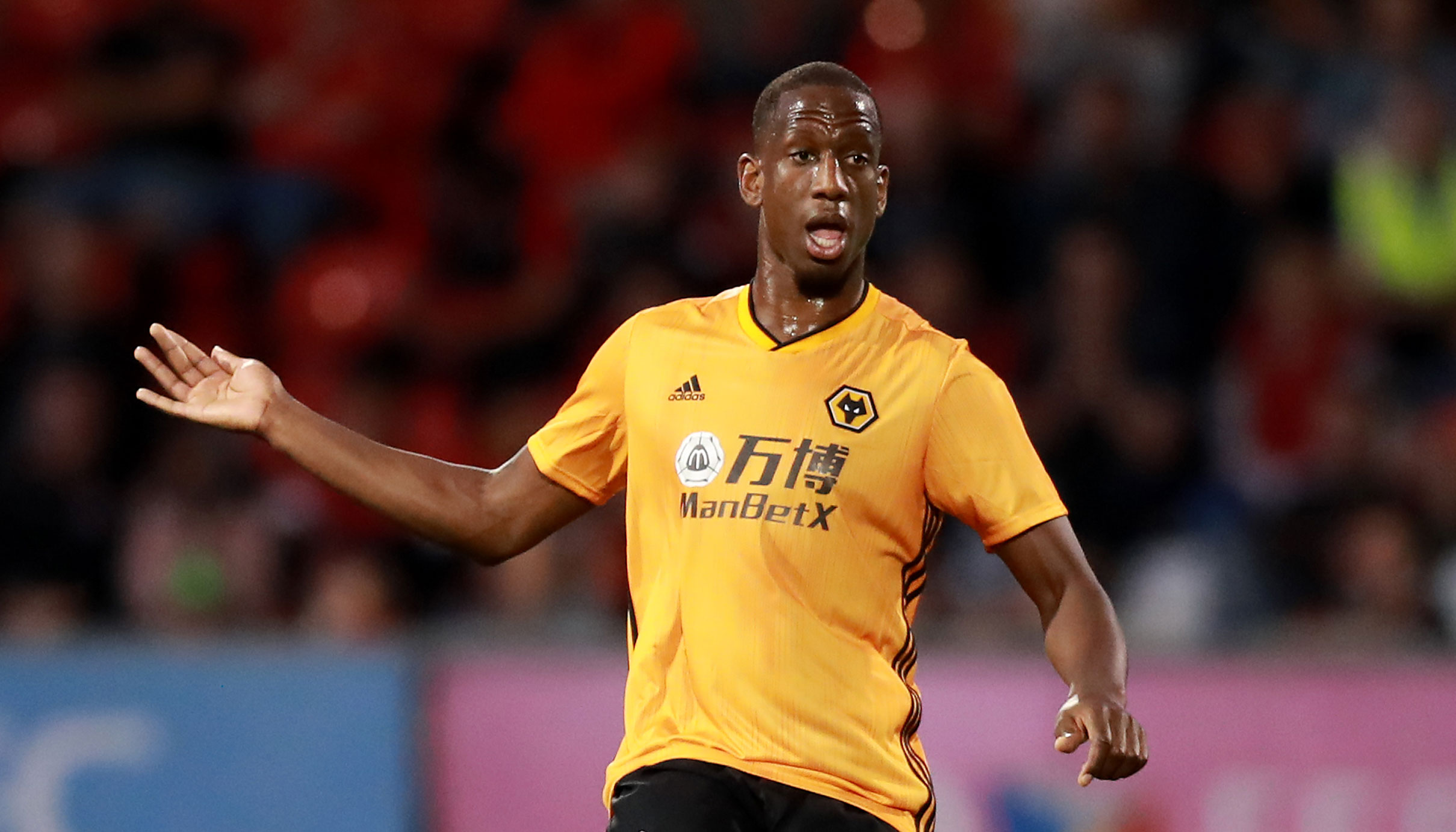 Wolves vs Brighton: Wanderers to wear down Seagulls​