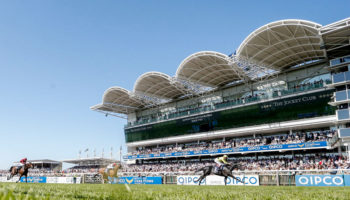 ITV Racing tips: Newmarket and York selections