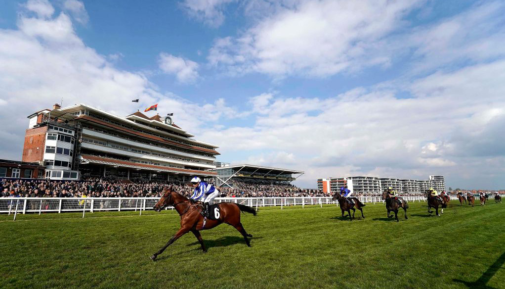 ITV racing tips: Newbury and Newmarket selections